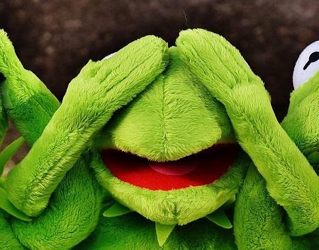 Kermit not seeing